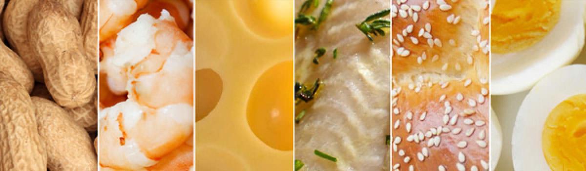 Immagine dei quattorcidi allergeni alimentari